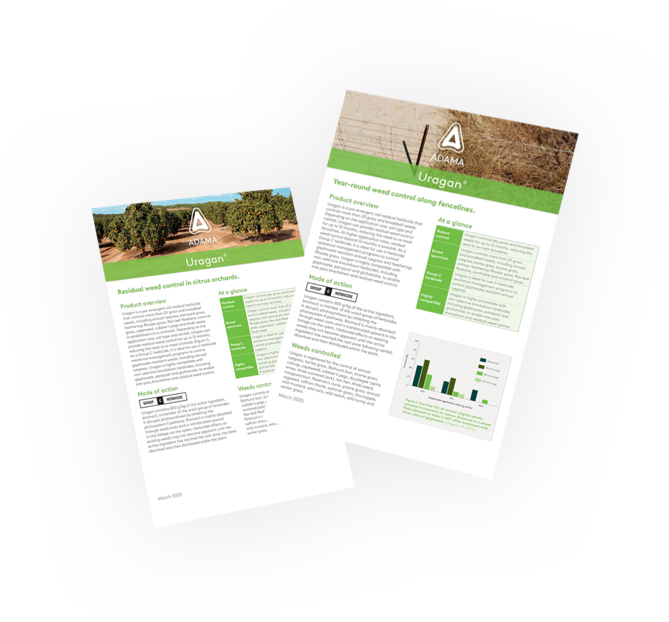 Pdf-Floating-Posters-Template